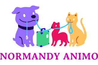Normandy Animo