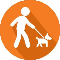 Promenade, ballades de chiens - Région de Lisieux, Bernay, calvados, eure, Normandie